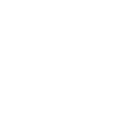 Metropolitan business Management